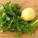 Cilantro and Lemon