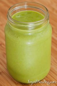 Vitamix Mint Smooothie