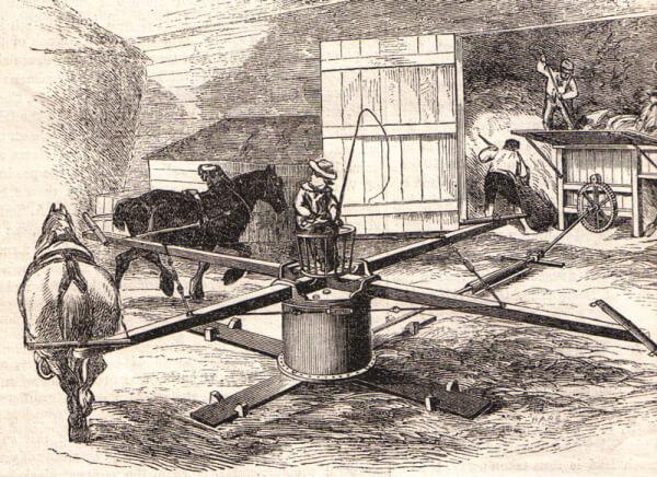2-Horsepower-Horse-Gin